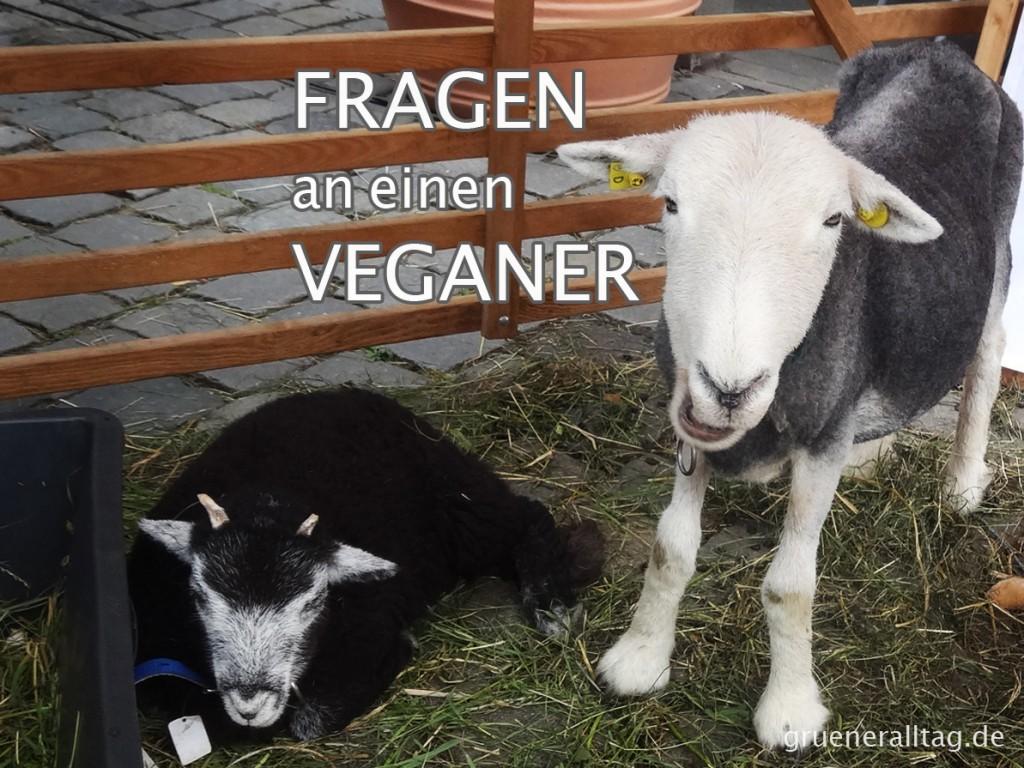 Fragen an einen Veganer - Teil 2