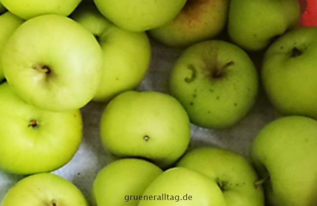 Detox im Alltag mit Gartenäpfeln