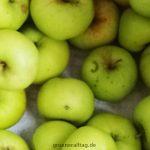 Gartenäpfel